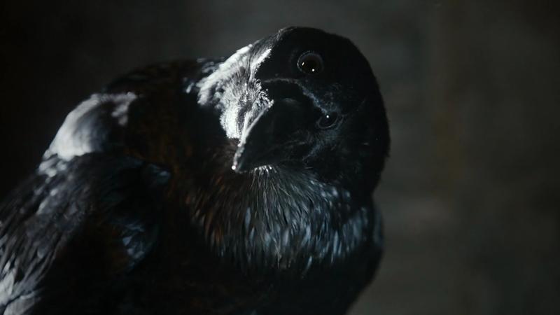 got-three-eyed-crow